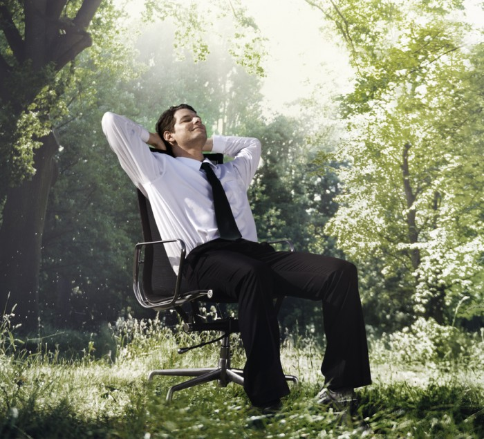 Businessman Relaxation Nature Environmental Conservation Concept